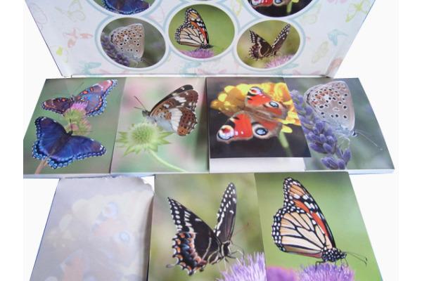 ROOST Notizblock Schmetterling 37011 6 sortiert