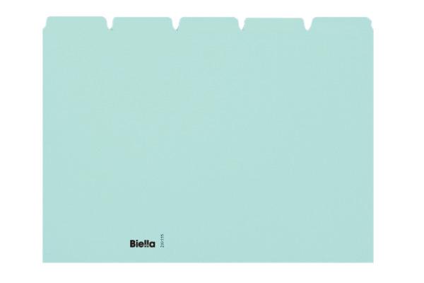 BIELLA Kartei-Leitkarten blanko A5 210555.05 blau, 25-teilig