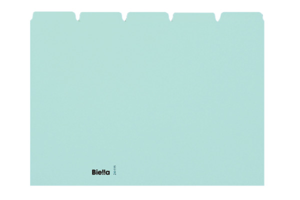 BIELLA Kartei-Leitkarten blanko A5 21055505U blau, 25-teilig