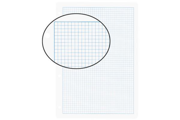 BIELLA Einlageblätter mit Rahmen A4 451445.00 weiss,kar. 5mm,4-Loch 100Bl.
