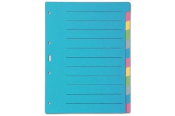 BIELLA Register Karton farbig A4 46141200U 12-teilig, blanko