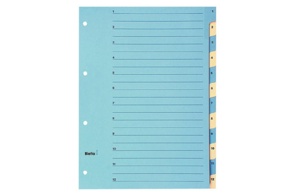 BIELLA Register Karton farbig A4 462441.00 1-12