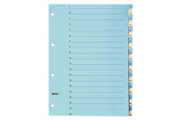 BIELLA Register Karton farbig A4 46244200U 1-20