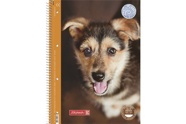 BRUNNEN Collegeblock Hund A4 10-67 927 90g, liniert, 80 Blatt
