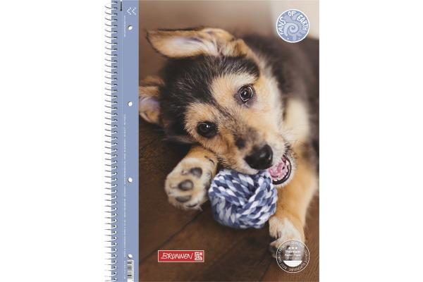 BRUNNEN Collegeblock Hund A4 10-67 928 90g, kariert, 80 Blatt