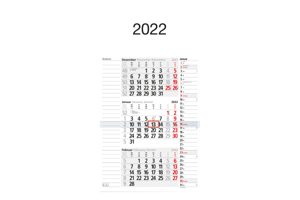 BÜHNER 3-Monatskalender ms. M3KPN 30x56cm, 2021