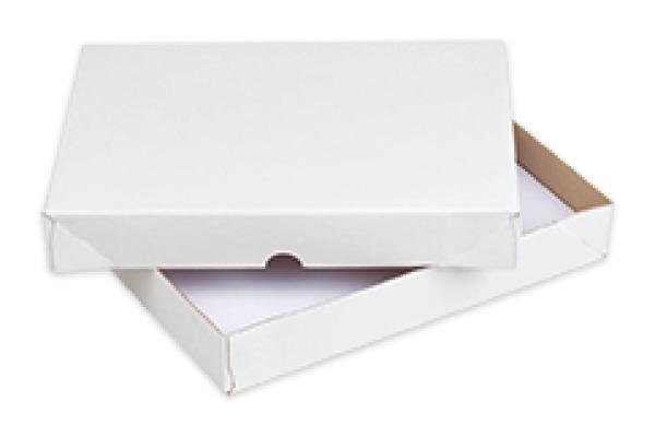 ELCO Paperbox Pac-it 300x225x45mm 28820.1 weiss 25 Stück