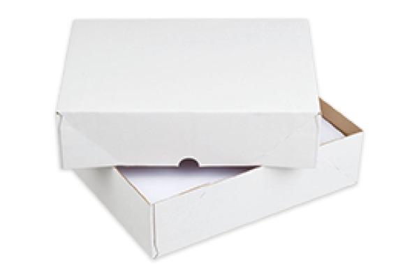 ELCO Paperbox Pac-it 300x220x80mm 28821.1 weiss 25 Stück