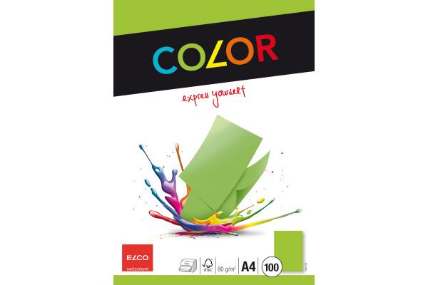 ELCO Office Color Papier A4 74616.62 80g, grün 100 Blatt