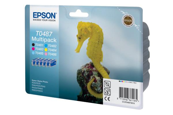 EPSON T048740