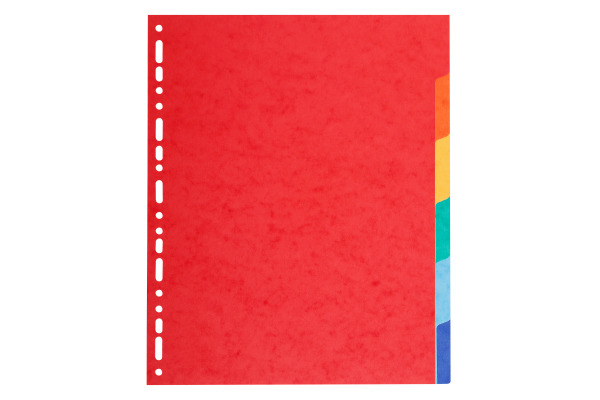 EXACOMPTA Karton-Register, DIN A4 Überbreite,...