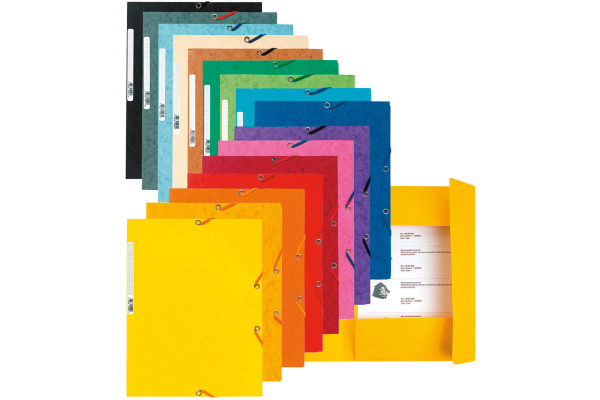 EXACOMPTA Eckspannermappe, DIN A4, Karton, farbig sortiert
