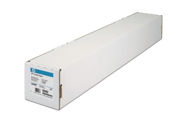 HP C6019B