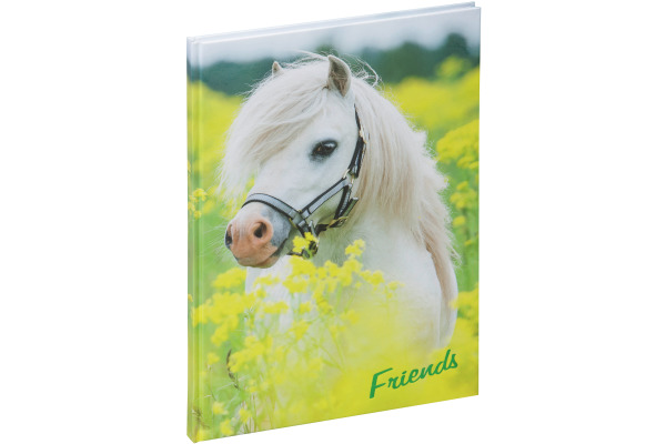 PAGNA Freundebuch 20346-15 kleines Pony 60S