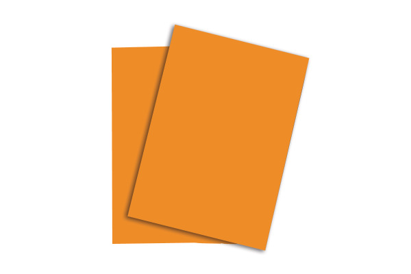 PAPYRUS Rainbow Papier FSC A4 88043184 80g, neonorange 100 Blatt