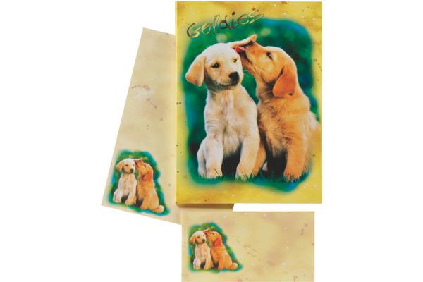 ROOST Papier/Couverts Goldies 180350 80g, beige/gelb 2x10 Stück