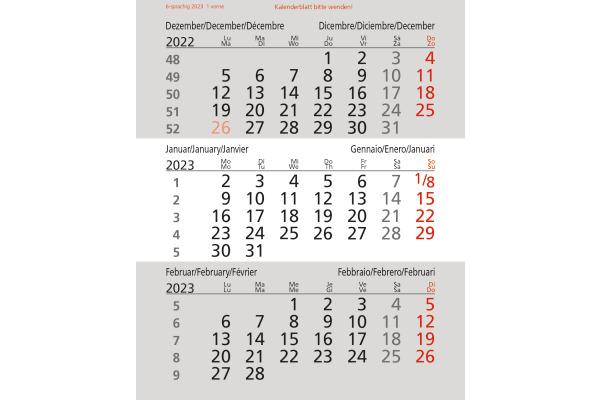 SATUREX 3-Monats-Ersatzblätter 5039EKA d/e/f/i/sp/nl 10,7x13cm, 2021