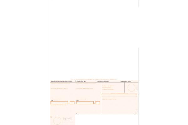 SIMFACT Simfacture BESR A4 38323 orange,90g, Rahmen 500...