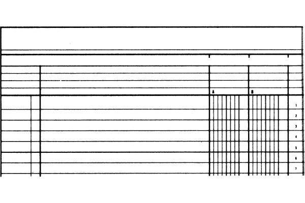 SIMPLEX Statistikbuch A4 19082 grün 40 Blatt