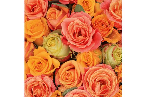 STEWO Servietten Rosso 33x33cm 257263811 orange 20 Stück