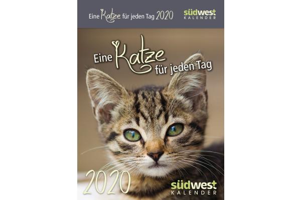 SÜDWEST Eine Katze für jeden Tag ABK 517097572 D, 15x11cm, 2020