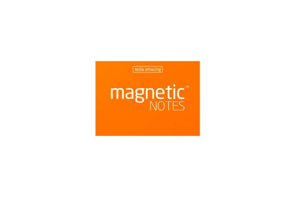 TESLA AM. Magnetic Notes S 70x50mm 102 peachy 100 Blatt