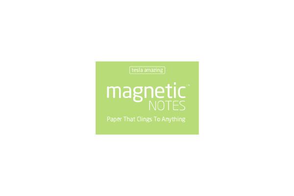 TESLA AM. Magnetic Notes S 70x50mm 105 mint 100 Blatt