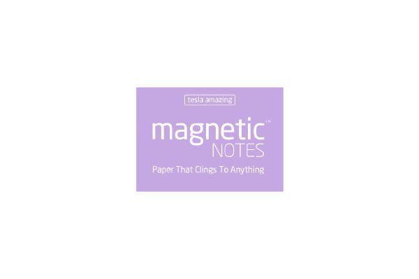 TESLA AM. Magnetic Notes S 70x50mm 106 pearl 100 Blatt