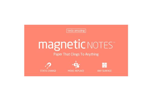 TESLA AM. Magnetic Notes L 200x100mm 113 spring 100 Blatt