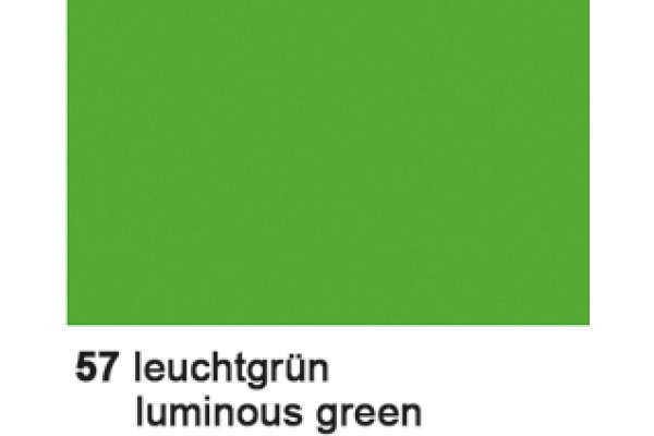 URSUS Plakatkarton 48x68cm 1002557 380g, grün