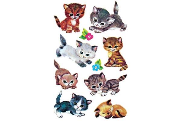 Z-DESIGN Sticker Kids 4346 Katzen 3 Stück