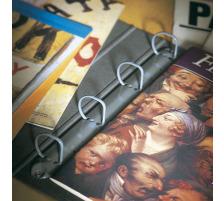 3L Abheftstreifen A4/295mm 8804-50 Universallochung 50 Stück Selbstklebende Heftstreifen aus reissfestem Polyester , zum Abheften von ungelochtem Schriftgut, Katalogen, Broschüren in Ordnern und Ringbücher , mit Universallochung , Hilf