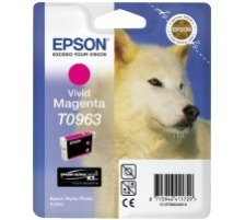 EPSON T096340