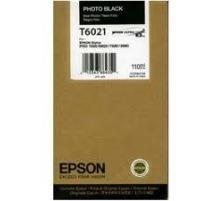 EPSON T602100
