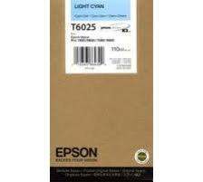 EPSON T602500