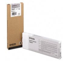 EPSON T606700