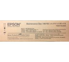 EPSON T699700