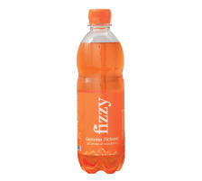 FIZZY Gazzosa ticinese 50cl PET 130357 Mandarine 6 Stk.