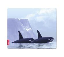 SPEEDLINK SL-6242-ORCA