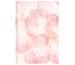 BIELLA GA Dispo Term Trend 0808543.7 14,5x20,5 cm, 3½T/1S, Blossom