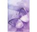 BIELLA GA Dispo Term Trend 2022 808543740 14,5x20,5 cm,3½T/1S,Butterfly