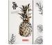 BRUNNEN Hausaufgabenheft Pineapple A5 104681465 multicolor 48 Blatt