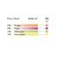 CARAN D´A Deckfarbe Gouache 500ml 2351.09 purpur
