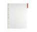 DURABLE Sichttafel Function A4 560703 transp.,Reiter 60mm rot
