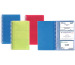 EXACOMPTA Visitenkarten-Ringb. 120x185mm 75077E ass. 96 Karten