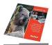 FOLEX Inkjet-Transferfolien A4 04100.000 10 Folien