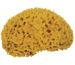 FRINA Naturschwamm 913.05 gelb 5cm