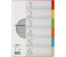 PAGNA Register Karton A4 32002-20 farbig 6-teilig