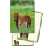 ROOST Papier/Couverts Shetlandpony 180388 80g, grün/braun 2x10 Stück